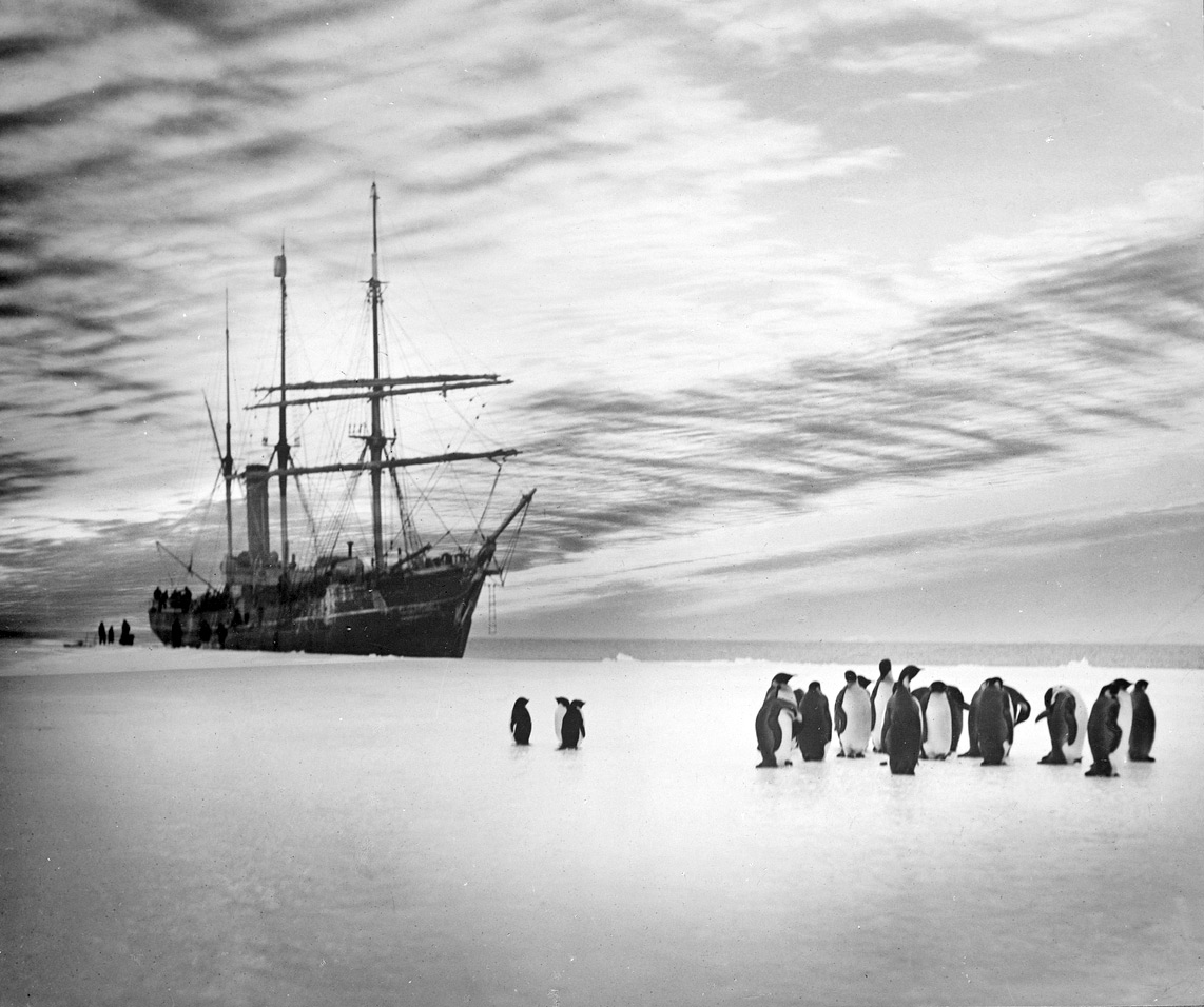Who was Douglas Mawson? Antarctic Explorer - Power Point