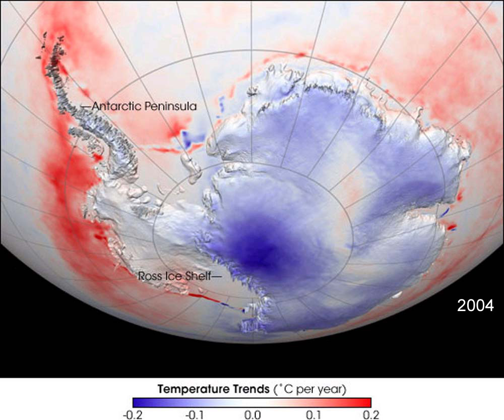 antarctica the effects of global warming acclimation