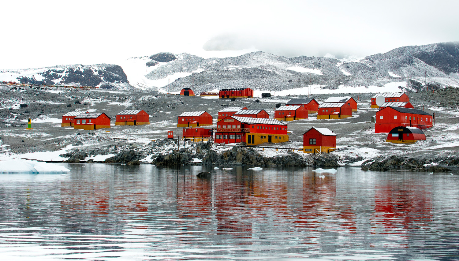 Who Lives In Antarctica The Antarctic Population - 12 things to see and do in antarctica