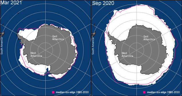 arctic and antarctic sea ice