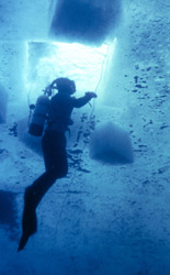 The start of a dive under ice