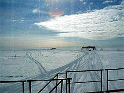 Halley 16th Feb 2006 - webcam image