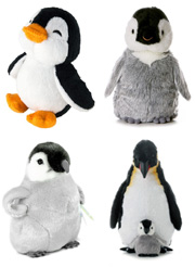 Penguin toys, plush